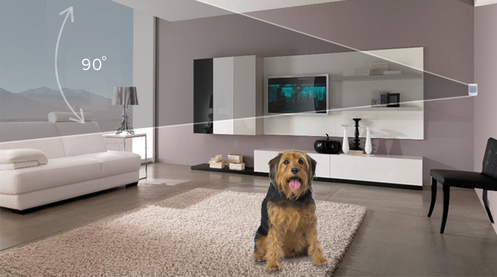 SimpliSafe Pet-Friendly Motion Sensor