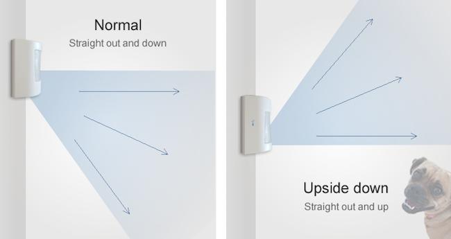 this motion sensor trick keeps pet owners happy diy home security. Black Bedroom Furniture Sets. Home Design Ideas
