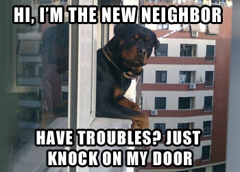Neighborhood Security Dog
