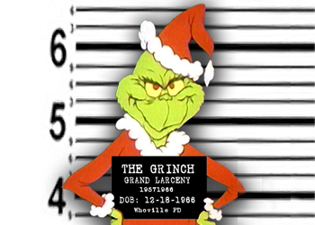 Home Security Holiday Gift Guide Anti Grinch Protection