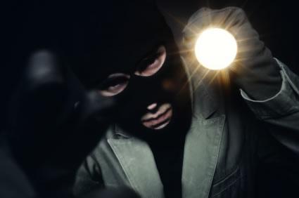 burglar_secrets